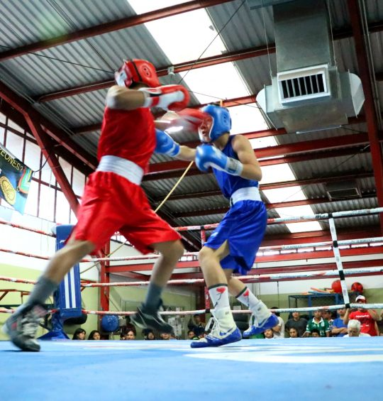 Definen selección oaxaqueña de boxeo para competencia regional y nacional