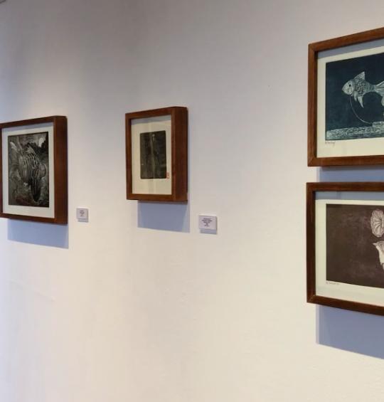 Exhiben obras de Darío Castillejos y el Taller Oaxaca Gráfico en la Casa de Cultura